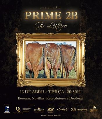 2° Leilão Prime 2B Gir Leiteiro