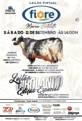 Leilão Girolando Edição Especial - Grupo Fiore