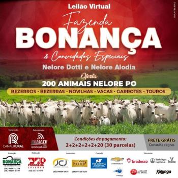 Leilão Virtual Fazenda Bonança & Convidados Especiais