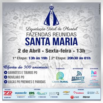 Liquidação Total de Plantel - Fazendas Reunidas Santa Maria