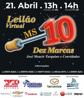 Leilão Virtual Dez Marcas MS