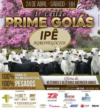 1° Leilão Prime Goiás Ipê Agronegócios