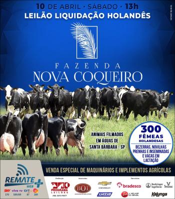 Leilão Liquidação Holandês Fazenda Nova Coqueiro