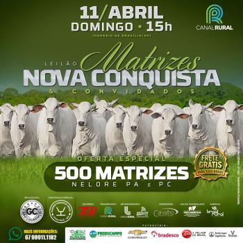 Leilão Matrizes Nova Conquista & Convidados