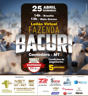 Leilão Virtual Fazenda Bacuri