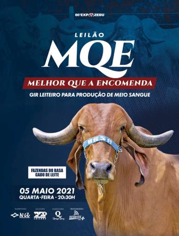 Leilão MQE - Melhor Que a Encomenda