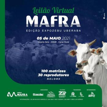 Leilão Virtual Mafra - Edição ExpoZebu Uberaba