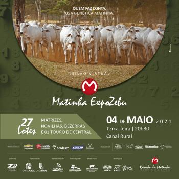 Leilão Virtual Matinha ExpoZebu