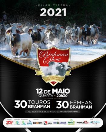 Leilão Virtual Brahman Show 2021