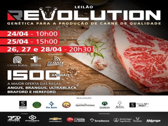 Leilão Revolution - 4° Etapa