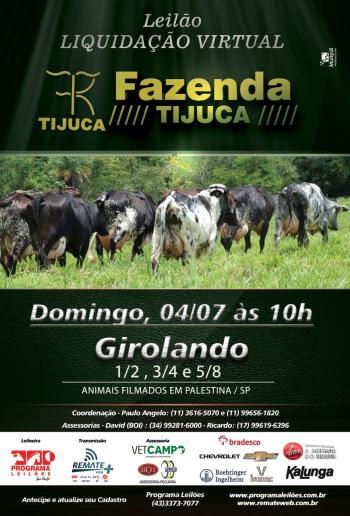 Leilão Liquidação Virtual Fazenda Tijuca