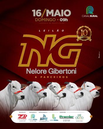 Leilão NG Nelore Gibertoni & Parceiros
