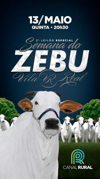 2° Leilão Especial Semana do Zebu Vila Real