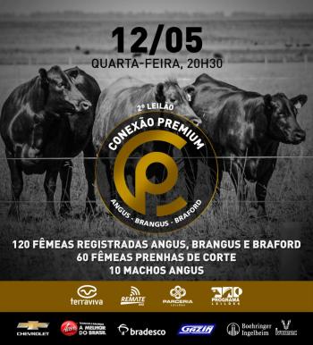 2° Leilão Conexão Premium