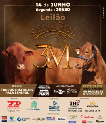 Leilão Senepol 3M