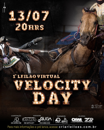 1° Leilão Virtual Velocity Day