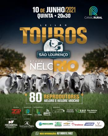 Leilão Touros Fazenda São Lourenço - Etapa Nelorio