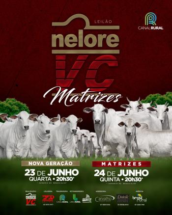 Leilão Nelore VC Matrizes - Etapa Matrizes