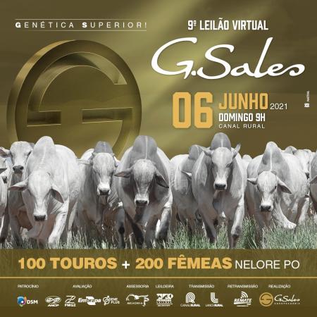 9° Leilão Virtual G. Sales