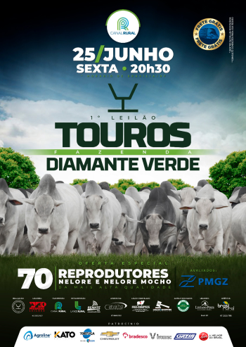 1° Leilão Touros Fazenda Diamante Verde