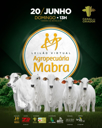 Leilão Virtual Agropecuária Mabra