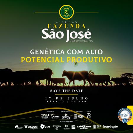 4° Leilão Fazenda São José
