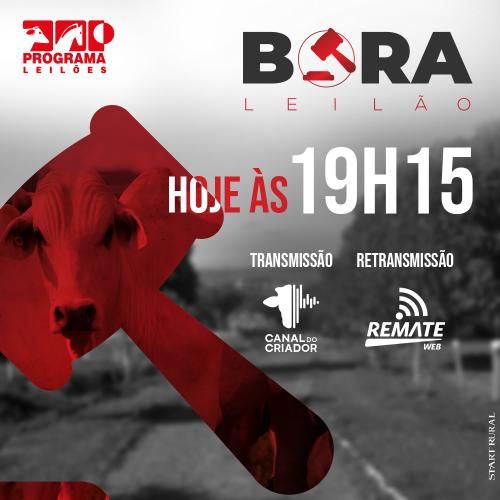 Bora Leilão - 10/06