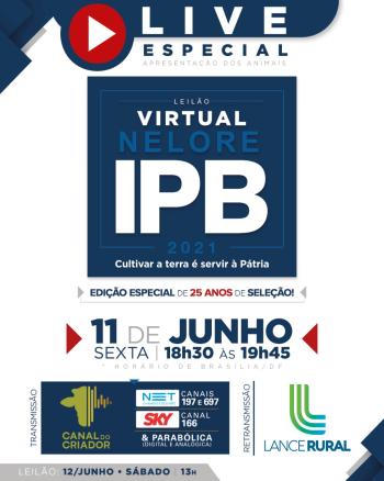 LIVE ESPECIAL | Leilão Virtual Nelore IPB 2021