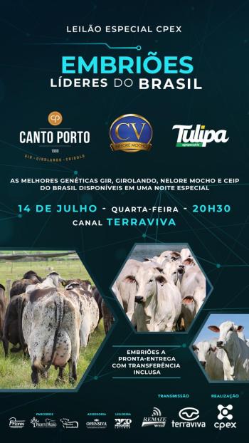 Leilão Especial CPEX - Canto Porto, CV e Tulipa
