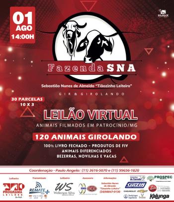 Leilão Virtual Fazenda SNA - Gir & Girolando