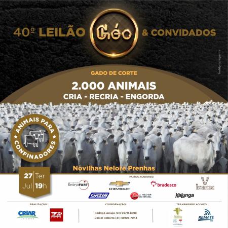 40° Leilão Géo & Convidados
