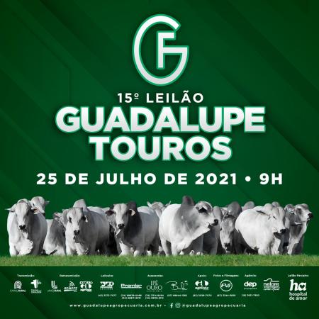 15° Leilão Guadalupe - Etapa Touros