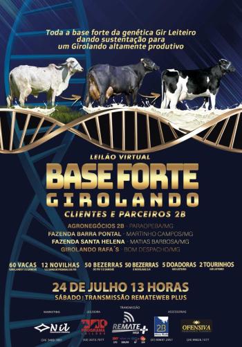 Leilão Virtual Base Forte Girolando 2B