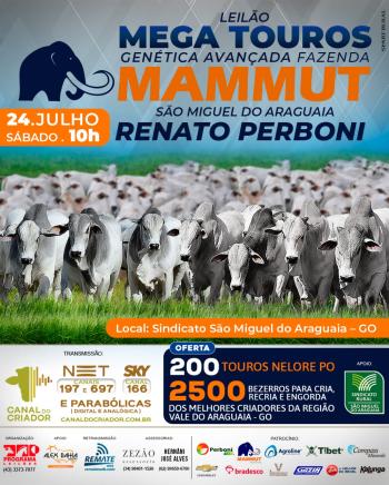 Leilão Mega Touros Genética Avançada Fazenda Mammut