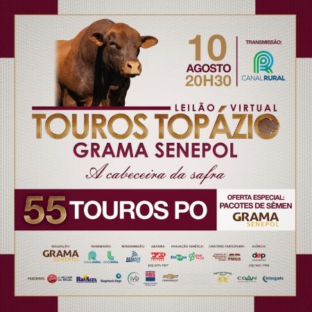 """Touros Senepol Topázio Grama: """"A cabeceira da Safra"""""""