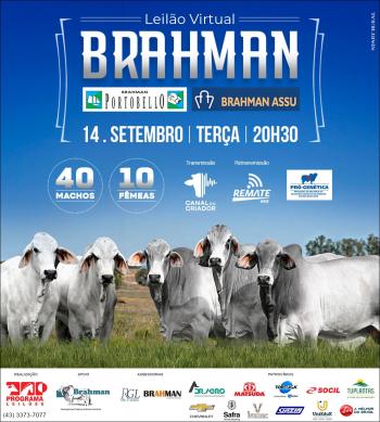 Leilão Virtual Brahman - Brahman Portobello e Brahman Assu