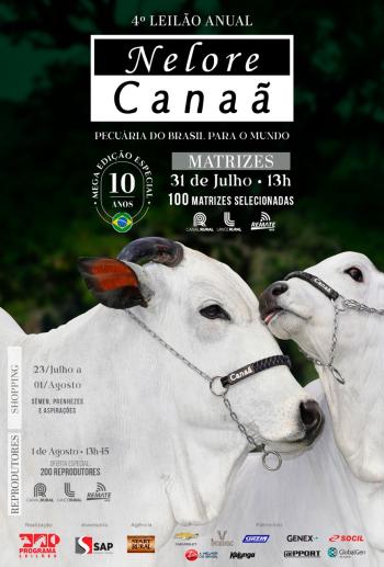 4° Leilão Anual Nelore Canaã - Matrizes