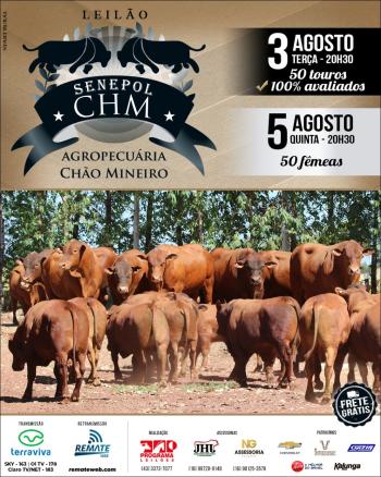 Leilão Senepol CHM - Agropecuária Chão Mineiro | Touros