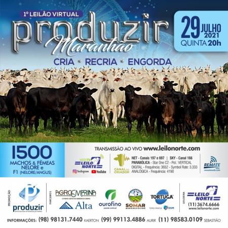 1° Leilão Virtual Produzir Maranhão