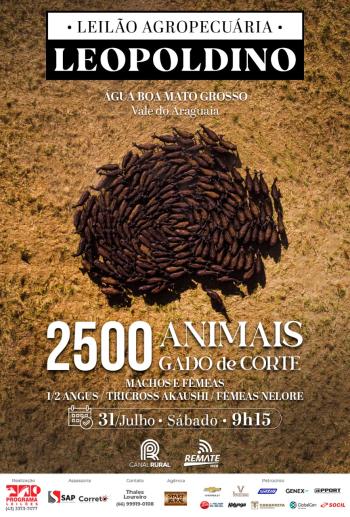 Leilão Agropecuária Leopoldino
