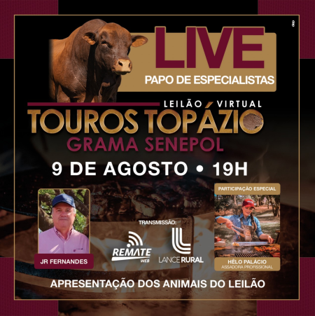 LIVE   Leilão Virtual Touros Topázio Grama Senepol
