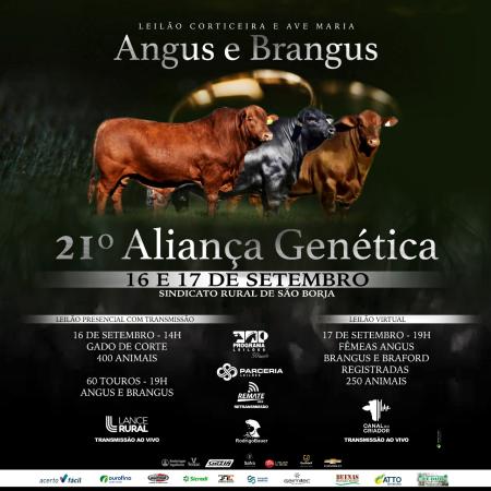 Corticeira e Ave Maria - 21° Aliança Genética - Touros