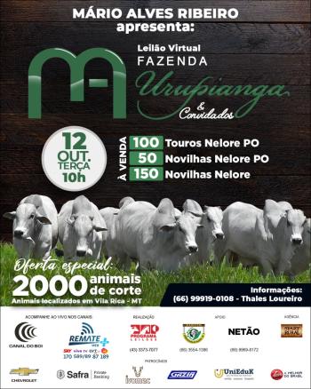 Leilão Virtual Fazenda Urupianga & Convidados