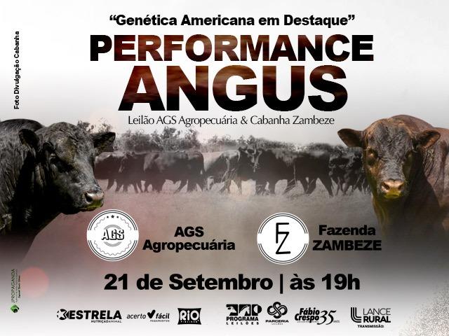Leilão Performance Angus