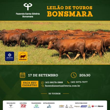 Leilão de Touros Bonsmara - Fazenda Santa Silvéria