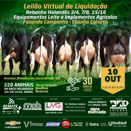 Leilão Virtual de Liquidação Fazenda Campanha