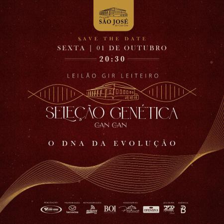 Leilão Gir Leiteiro Seleção Genética Can Can