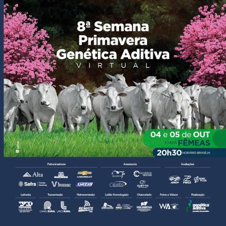 8° Semana Primavera Genética Aditiva - Fêmeas - 05/10